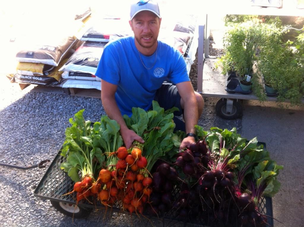 1-Beet Harvest